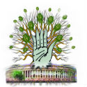 Congress stalls Coalgate probe