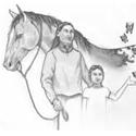 Hindi1389861221_boy-and-horse