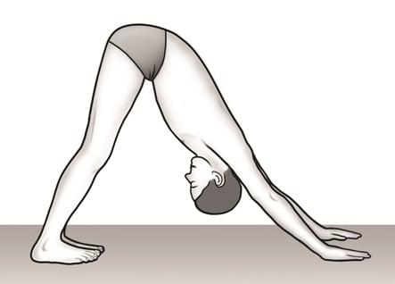 surya-namaskar-step-8