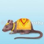 rat_150