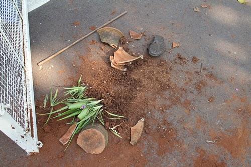Earthen pots damaged by miscreants in ashram premises
