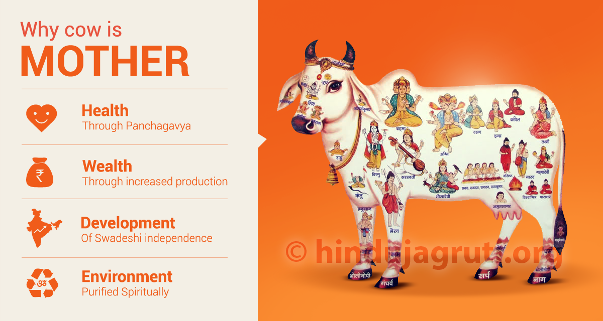 1_Mother-Cow-1b
