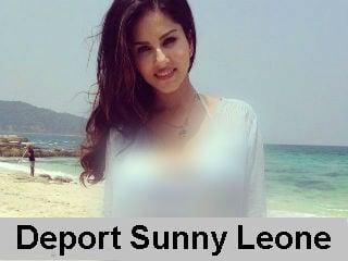 deport_sunny