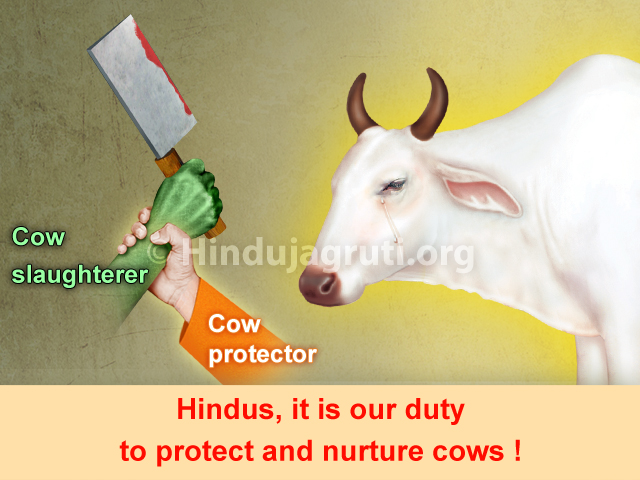 Prevention of Cow slaughter