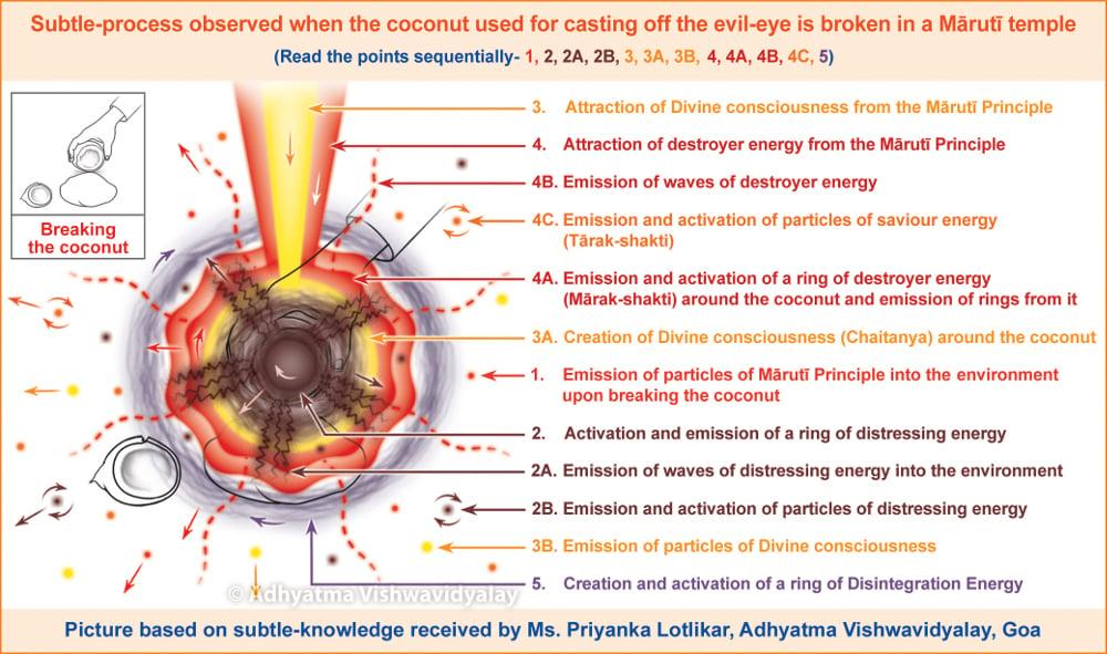 casting-of-eye-coconut3
