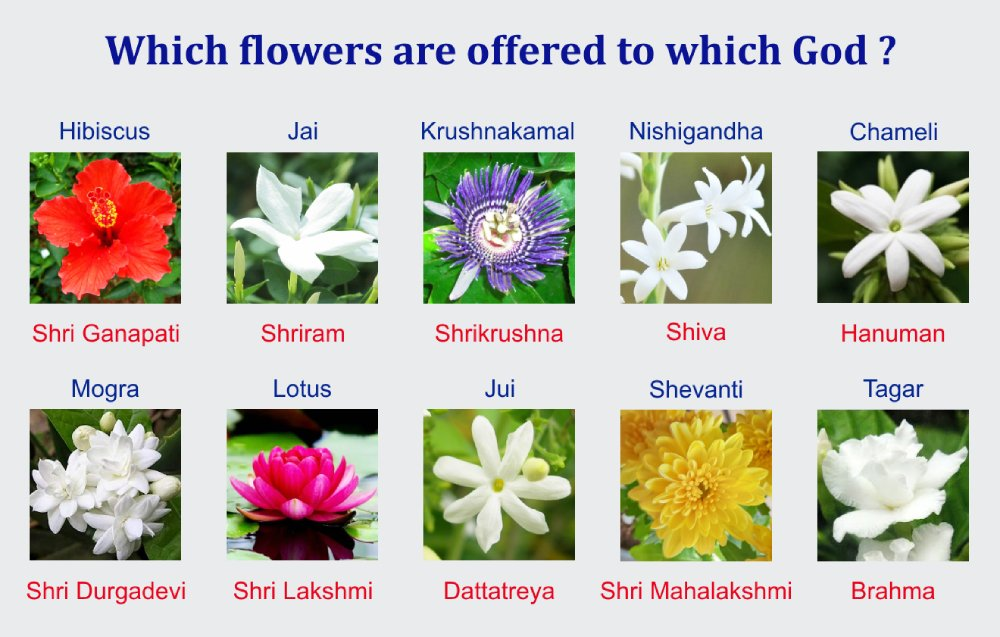 Why is a specific flower offered to a specific God ? - Hindu
